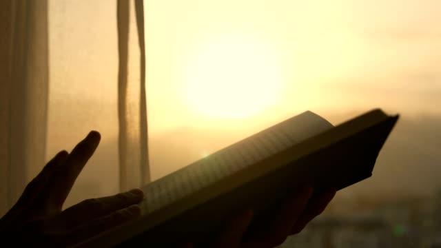 libro di lettura al tramonto per finestra - uomini giovani video stock e b–roll