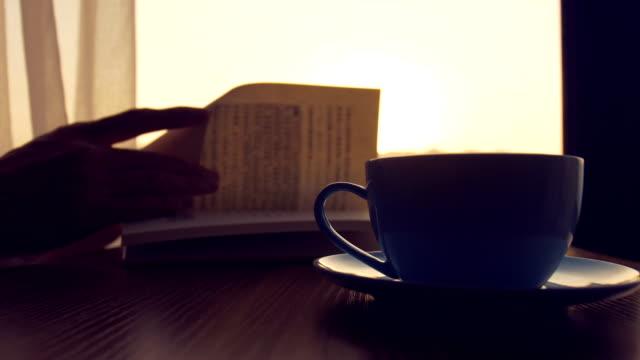 vidéos et rushes de livre de lecture dans le café - adulte
