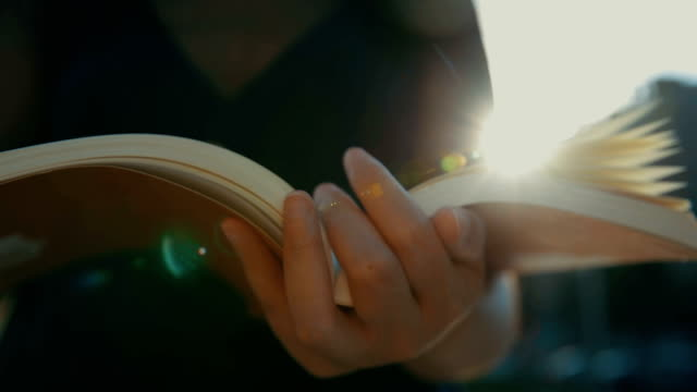 reading book with summer sunset light - university student stock videos & royalty-free footage