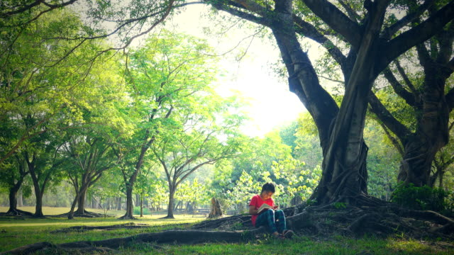 reading in park - one girl only stock videos & royalty-free footage
