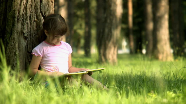 reading in park - reading stock videos & royalty-free footage
