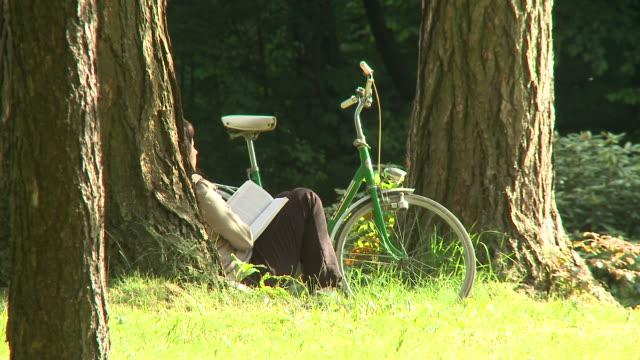 hd: lesung im park - lehnend stock-videos und b-roll-filmmaterial