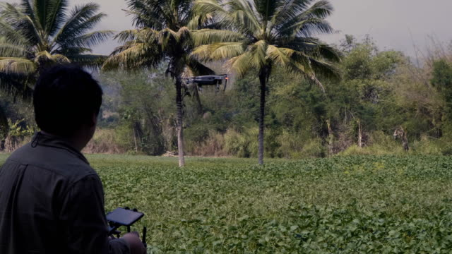 real asian farmer pilot using drone remote controller - drone pilot stock videos and b-roll footage