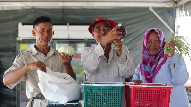 vídeos y material grabado en eventos de stock de agricultores reales en invernadero - empresa de carácter social