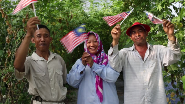 real farmers - malaysian flag - cultura malesiana video stock e b–roll