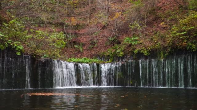 4k real time: karuizawa shiraito waterfalls in nagano, japan. - nagano prefecture stock videos & royalty-free footage