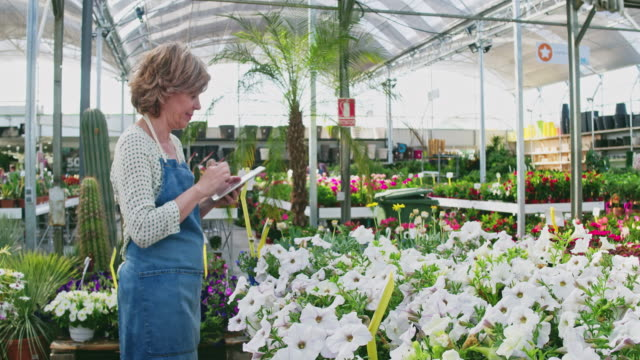 real time video of owner using digital tablet at greenhouse - gardening stock videos & royalty-free footage