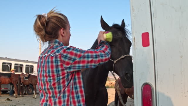 real time video of people preparing horses for a rodeo in utah, usa - saddle stock videos & royalty-free footage
