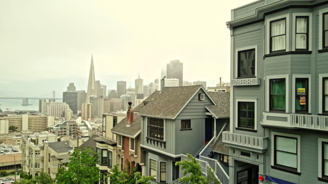 real time video of san francisco downtown - baia di san francisco video stock e b–roll