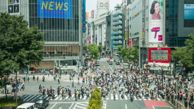 Real time video of Shibuya Crossing in Tokyo