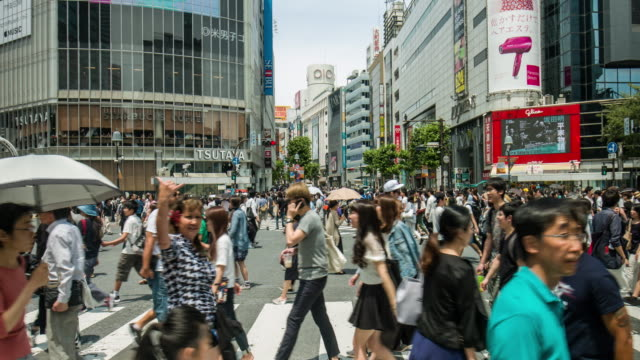 Echtzeit-Video von Shibuya Crossing in Tokio