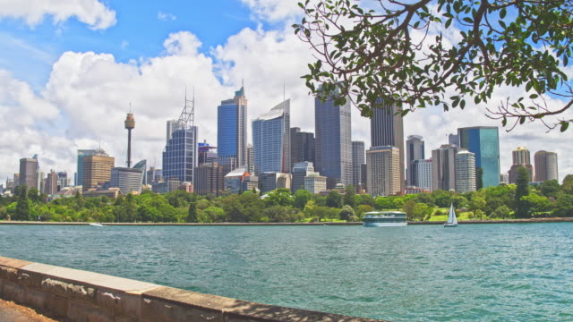 Real time video of Sydney central business district