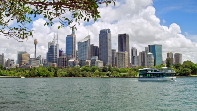 real time video of sydney central business district - sydney stock videos & royalty-free footage