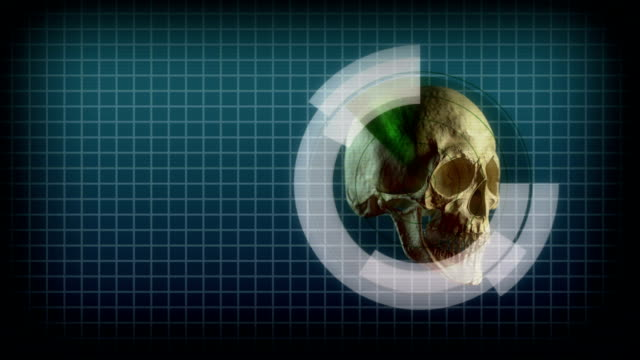 realistic skull with graphs - skull stock videos and b-roll footage