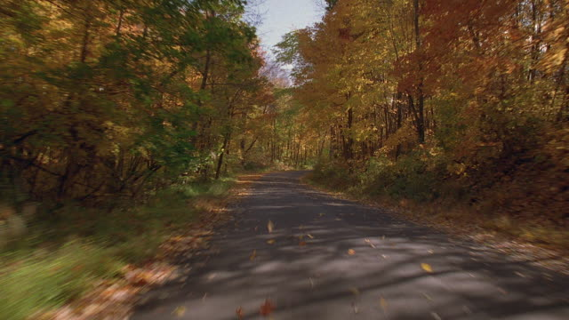 vidéos et rushes de rear car point of view driving downhill on country road in autumn / new england - route à une voie