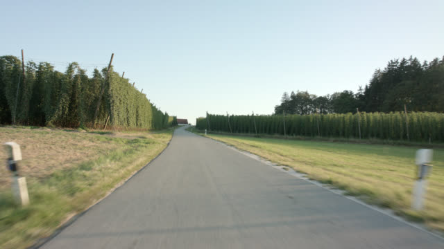 rear view automotive backplate - shot in the worlds largest brewing hops planting area of hallertau / holledau in bavaria. - 乗物後部から見た視点点の映像素材/bロール