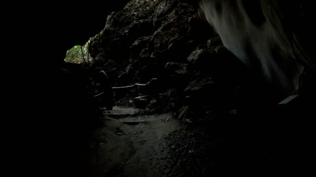 rear view: following family traveler go  out form cave in Ancient forest, Uthaithani, Thailand