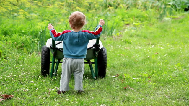 rear view of a child playing with a wheelbarrow - behind stock videos & royalty-free footage