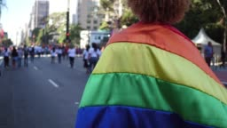 Rear view of a man walking with a rainbow flag during LGBT parade