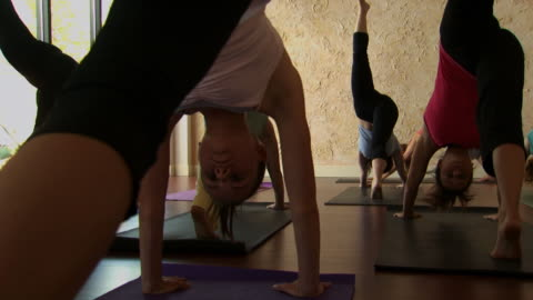 rear view of a women's yoga class - see other clips from this shoot 1149 stock videos & royalty-free footage