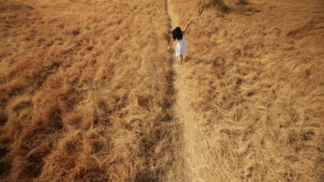 vídeos de stock e filmes b-roll de rear view of a young woman enjoying in the forest - cabelo comprido