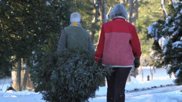 ws pan rear view of baby boomer couple carrying christmas tree / richmond, virginia, usa - see other clips from this shoot 1760 stock videos & royalty-free footage