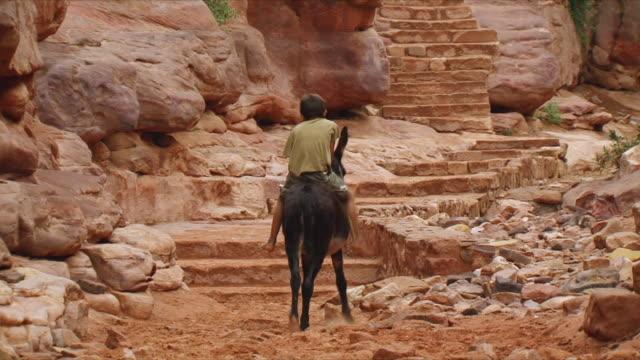 vídeos de stock e filmes b-roll de ws rear view of boy riding donkey up stone steps at al-siq, narrow gorge, entrance to ancient city of petra / jordan - petra