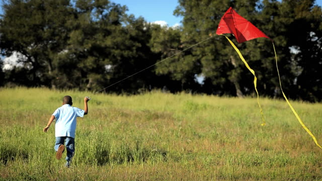 WS Rear view of boy (8-9) running and flying  kite in large grassy field / Los Angeles, California, USA