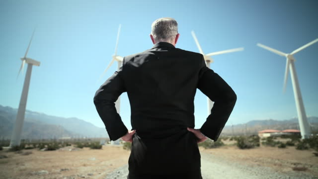 Rear view of businessman at wind farm