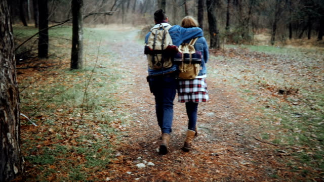 rear view of couple in love walking in forest - boyfriend stock videos & royalty-free footage