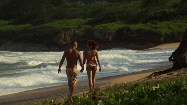 rear view of couple walking on beach holding hands - see other clips from this shoot 1142 stock videos & royalty-free footage