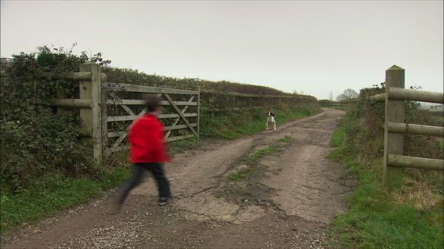 vidéos et rushes de ws rear view of dog and two children running on rural road / united kingdom - clôture