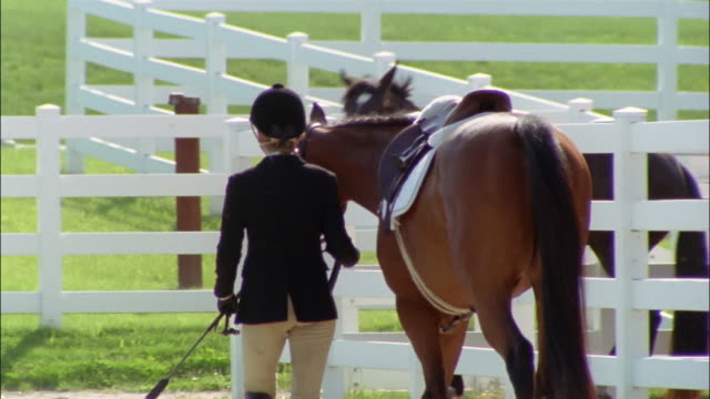 rear view of dressage rider leading horse past corrals - one teenage girl only stock videos & royalty-free footage