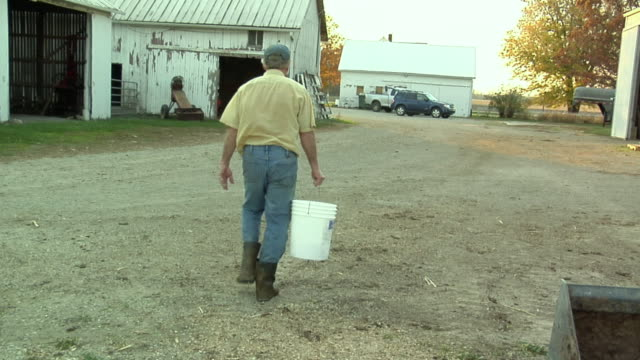 ws, rear view of farmer carrying pail towards barn, st. marys, ohio, usa - ohio stock videos & royalty-free footage