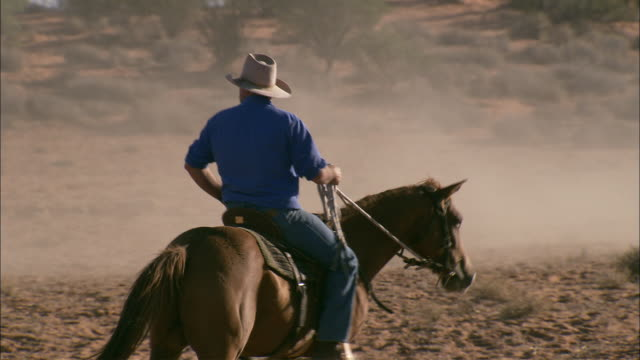 ms pan ws rear view of father and son in cowboy hats horseback riding, following herd of cattle across land, anna creek station, south australia, australia - bush stock videos & royalty-free footage