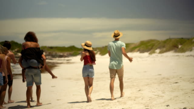 Rear view of friends walking at windy beach