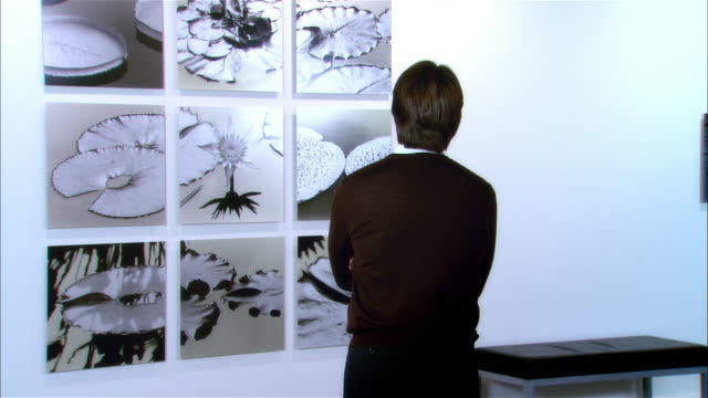 rear view of gallery owner looking at panels of lily pads / turning around and smiling at camera - art gallery stock videos & royalty-free footage