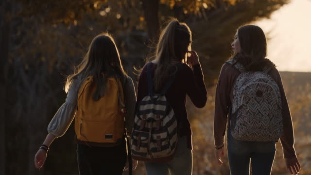 rear view of girls wearing backpacks talking and crossing street / cedar hills, utah, united states - rucksack stock videos & royalty-free footage
