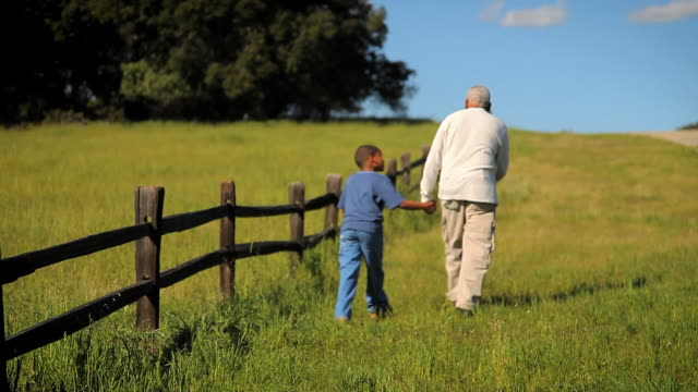 ws rear view of grandfather and grandson (8-9) walking along fence on grassy field / los angeles, california, usa - rear view stock videos & royalty-free footage