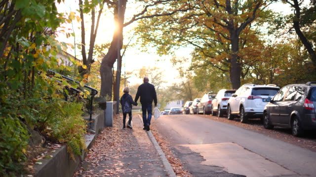 vidéos et rushes de rear view of grandson and grandfather walking with dog on sidewalk during autumn - trottoir