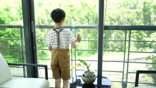 rear view of little boy looking through the window - one boy only stock videos & royalty-free footage