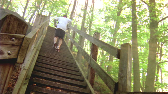ws, la, canted, rear view of male jogger ascending wooden steps in forest, rockford, illinois, usa - utetrappa bildbanksvideor och videomaterial från bakom kulisserna