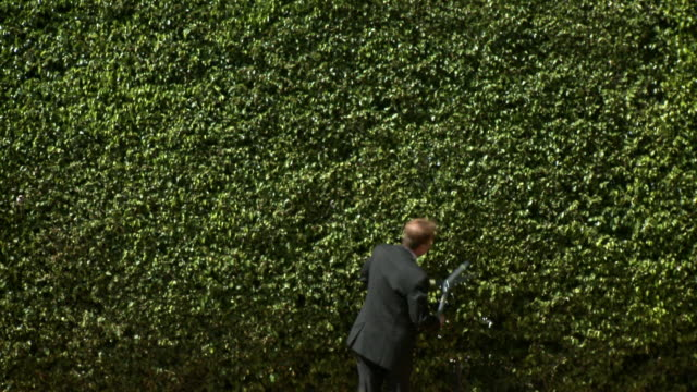 ws rear view of man in full suit trimming hedge, south beach, florida, usa - full suit stock videos & royalty-free footage