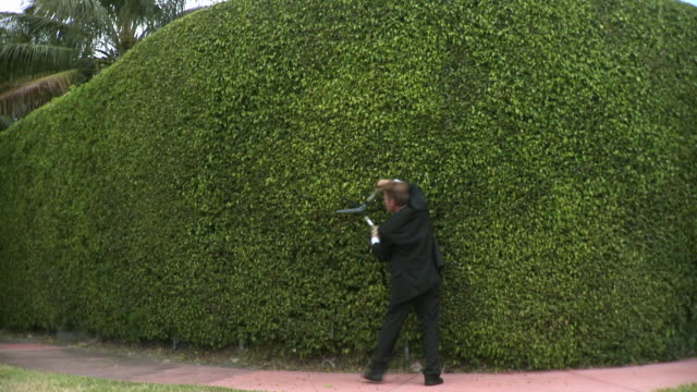ws tu rear view of man in full suit trimming hedge, south beach, florida, usa - full suit stock videos and b-roll footage