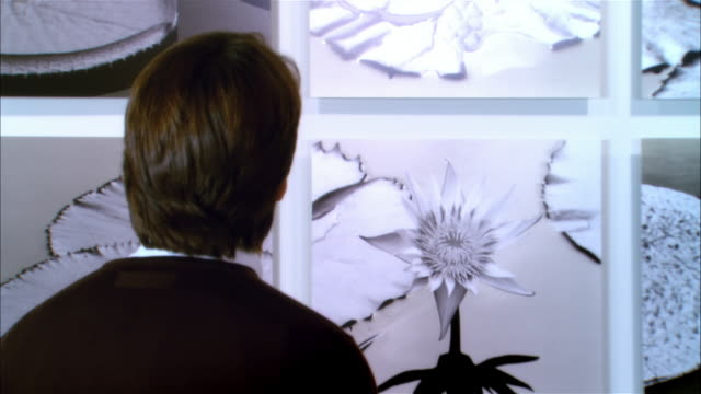 rear view of man looking at panels of lily pads in gallery - art gallery stock videos & royalty-free footage