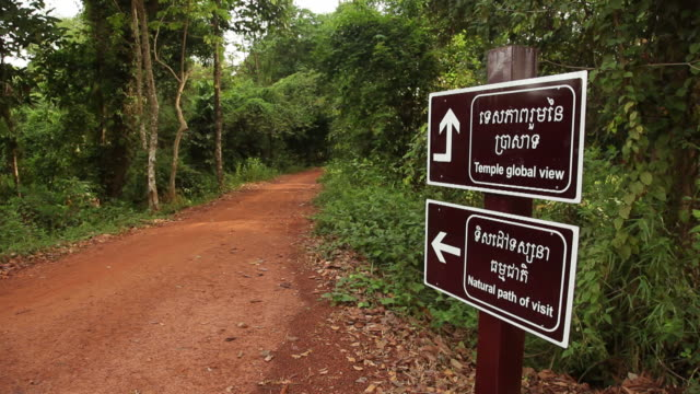 WS Rear view of man on path leading to temple / Angkor Wat, Siem Reap, Cambodia