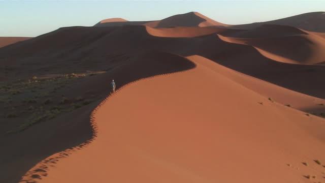 ws rear view of man walking on sand dune in namib desert / namibia - 荒野点の映像素材/bロール
