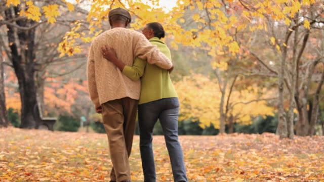 ws tu rear view of senior couple walking in park in autumn / richmond, virginia, usa - hugging tree stock videos & royalty-free footage