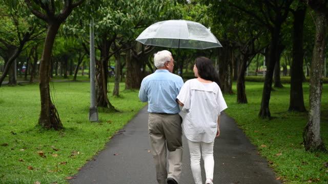 vista posteriore della coppia senior che cammina insieme all'ombrello nel parco - ombrello video stock e b–roll