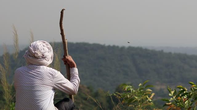 丘の上に座っているインドの上級男性の背面図 - 羊飼い点の映像素材/bロール